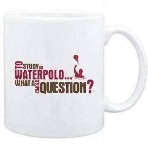 New  To Study Or Waterpolo  What A Stupid Question