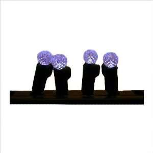 4864185 LED G12 White Raspberry String Lights Set