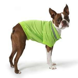 Polo Dog Shirt with Striped Collar XS LIME