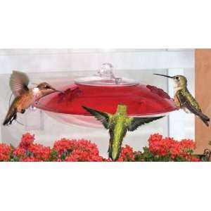 Droll Yankee Window Hummingbird Bird Feeder