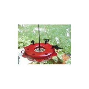 Birds Choice Hummerfest Hummingbird Feeder, 12 Ounce