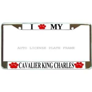 Cavalier King Charles Love Dog Paw Chrome Metal Auto License Plate